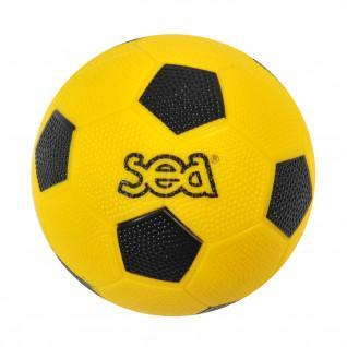 Handball-Einführung Sporti France Sea